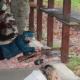 Na zdjęciu kilka zawodników w tym kobieta ładująca broń do strzału
