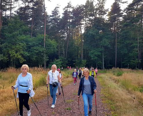 na zdjęciu maszerujący z kijkami w lesie na ścieżce